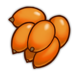 Orange Berries Icon.png