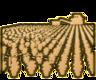 Farming 3 Icon.png