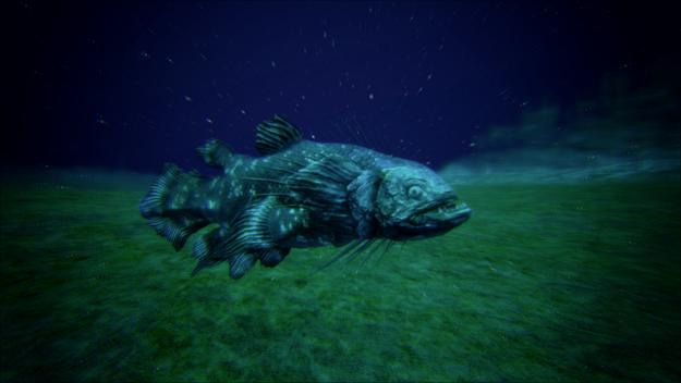 Piranha.png