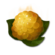 Icon fungal spores.png