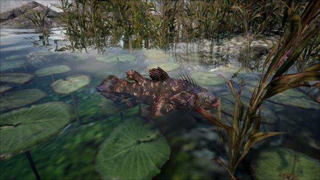 Piranha 2.png