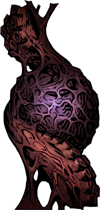 Gestating Heart.png
