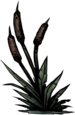 Bulrush.png