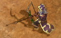 Bow T3.png