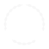 Deadeye Quillshot Icon 001.png