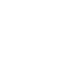Trials Icon.png