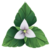 Heart Lily Icon 001.png