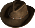 CowboyHat DarkBrown.png