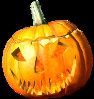 PumpkinHelmet.png