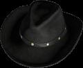 Cowboy Hat Black 2.png