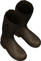 Wellies Brown.png