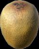 Fresh Kiwi.png