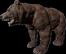 Wildlife - DayZ Wiki