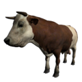 Bull Spotted.png