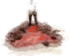 Dbd-journal-stain.png