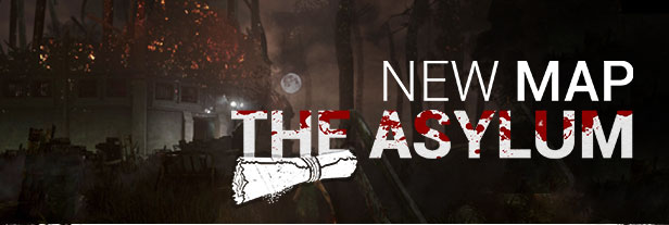 Asylum Banner.jpg