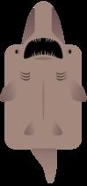 Goblin Shark.png