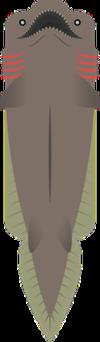Frilled Shark.png