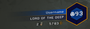 Player Badge.png
