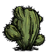 Oasis Cactus.png