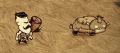Angry Baby Beefalo.png