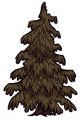 Adult Lumpy evergreen.png