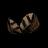 Roasted Birchnut.png