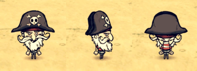 Pirate Hat Woodlegs.png
