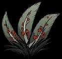 Berry Bush2.png