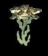 Seaweed Plant.png
