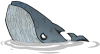 Blue Whale.png