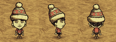 Winter Hat Walani.png