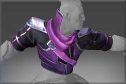 Cosmetic icon Vest of the Mage Abolisher.png