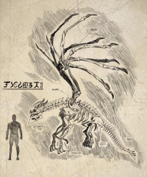 Archronicus Dragon Anatomy.png