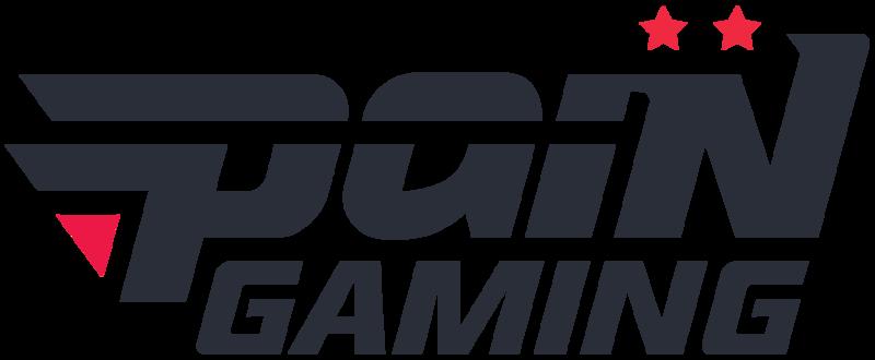 Pain Gaming Dota