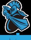 Team logo NewBee.png