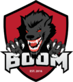 Team icon BOOM ID.png