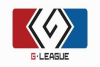 G-League 2013 (Ticket)