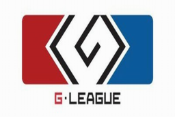 Cosmetic icon G-League 2013 (Ticket).png