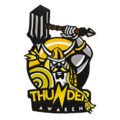 Team icon Thunder Awaken.png
