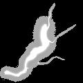 Mjollnir icon arc layer 3.png
