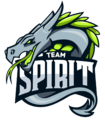 Team logo Team Spirit.png