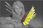 Sparrowhawk Wings
