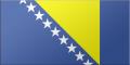 Flag Bosnia and Herzegovina.png