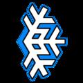 Team icon Boreal eSports.png