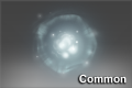 Cosmetic icon Common Item.png