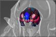 Cursed Zealot Visage