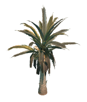 Desert Terrain Tree 2 Preview.png
