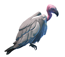 Desert Terrain Vulture Preview.png