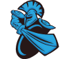 Team icon NewBee.png
